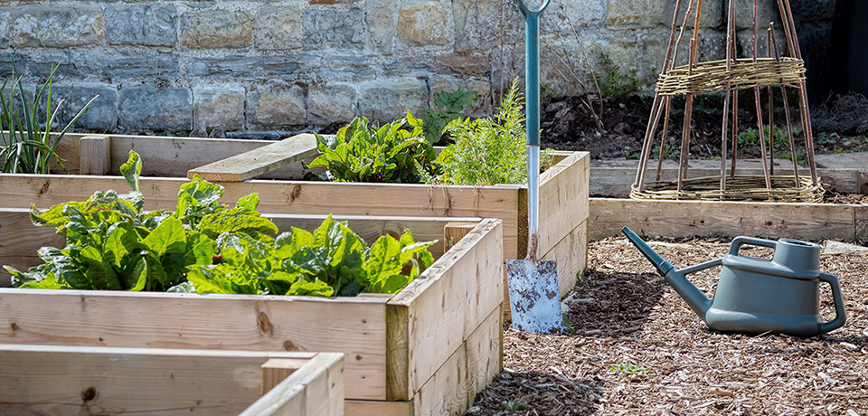 How To Create Your Own Raised Garden Bed