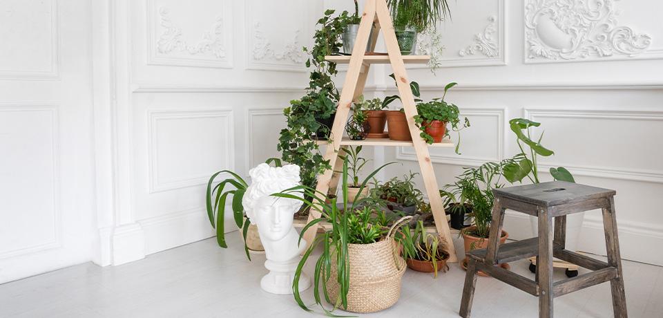 Wooden Ladders Beginner Level Diy Ideas